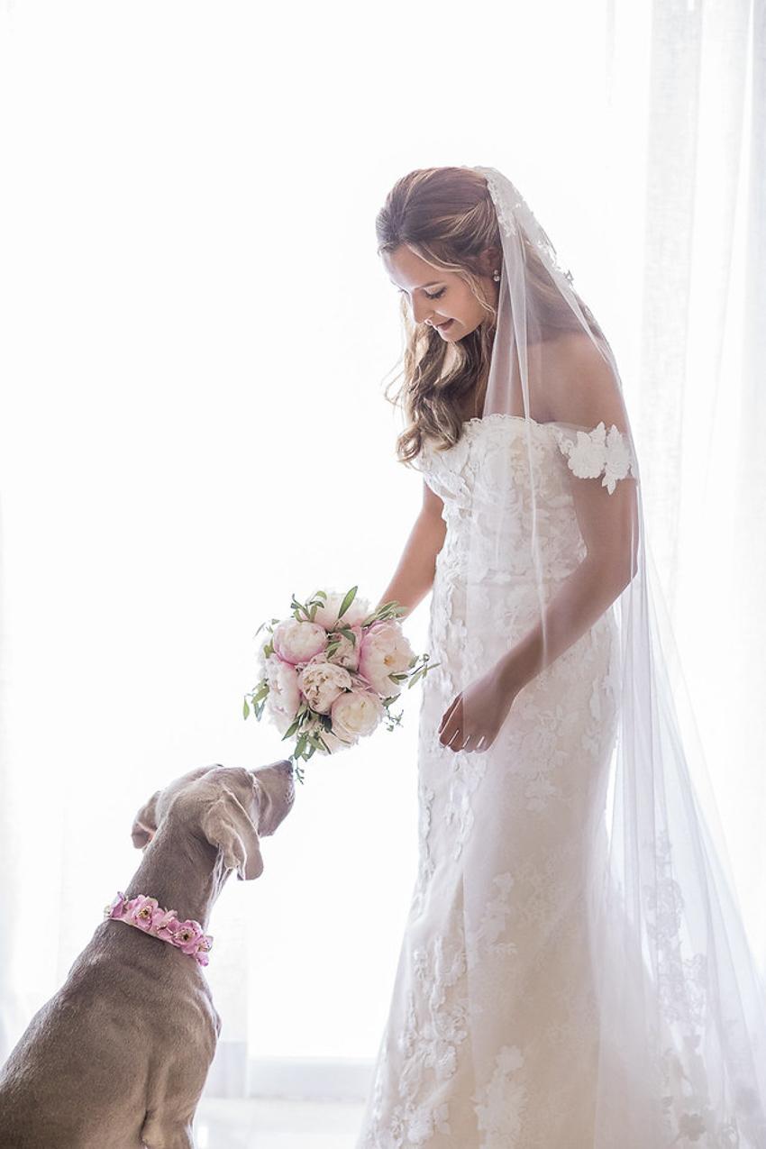 fotogrfo de bodas Malaga